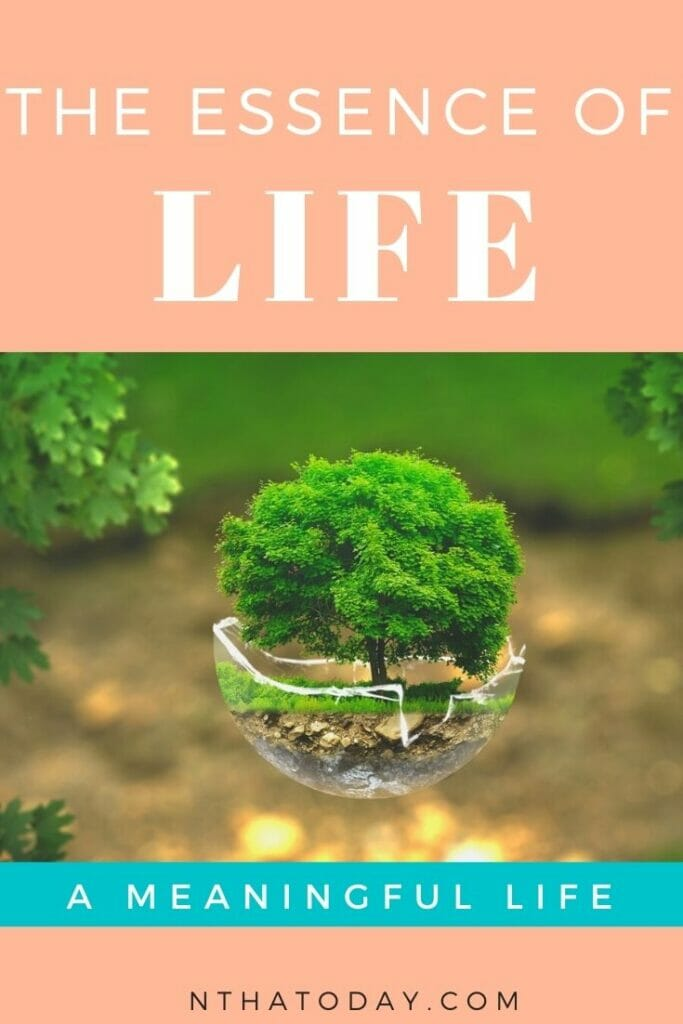 The essesence of life